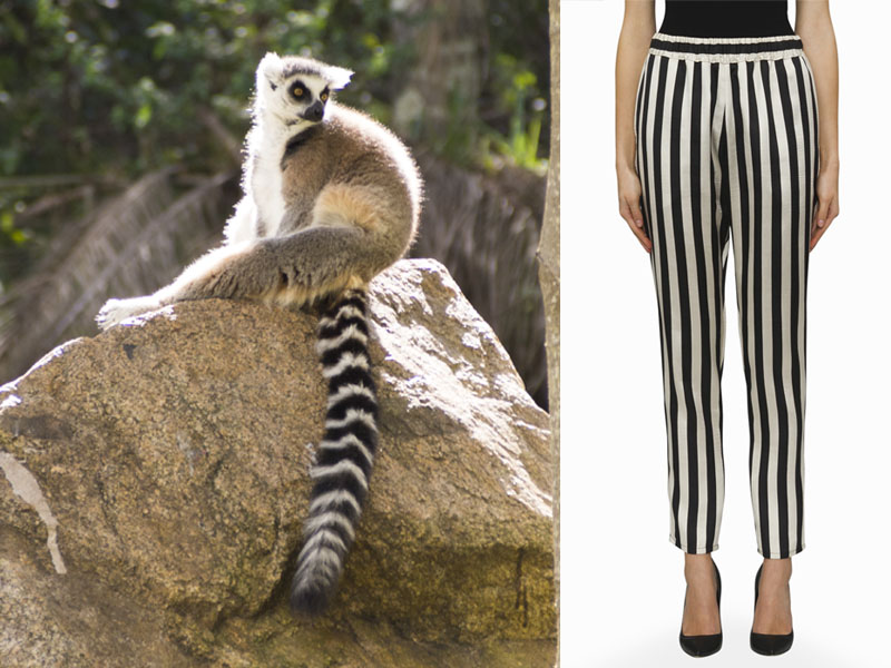 carly hunter striped pants winter style Brisbane