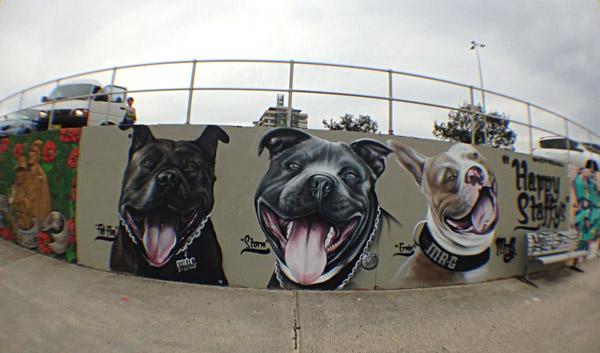 bondi beach street art