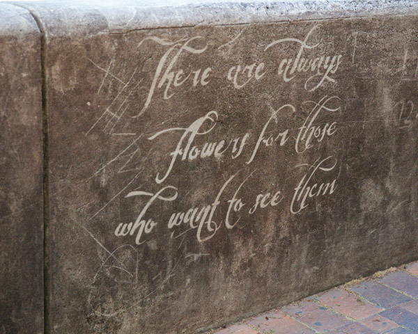 quote in the rocks sydney